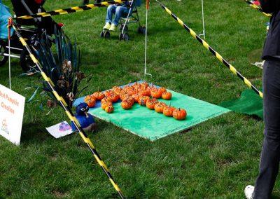 The Great Pumpkin Carnival 2018 13