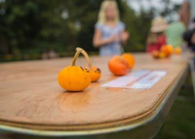 The Great Pumpkin Carnival 2017-6