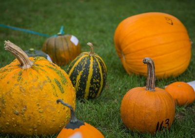 The Great Pumpkin Carnival 2017-7