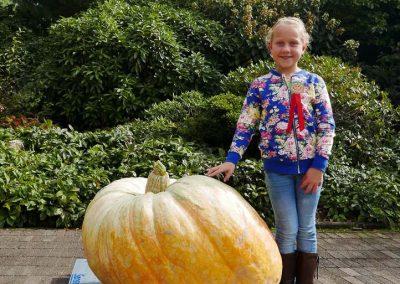 The Great Pumpkin Carnival 2018-12