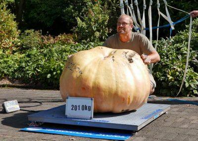 The Great Pumpkin Carnival 2018-24