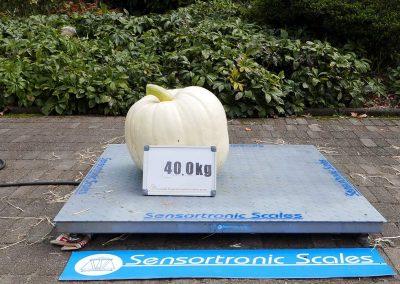 The Great Pumpkin Carnival 2018-32