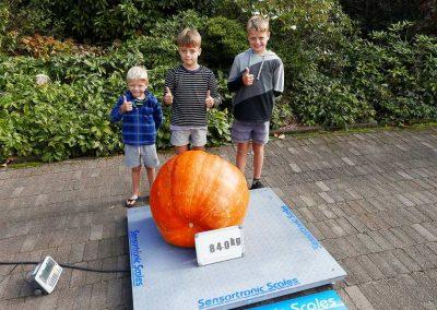 The Great Pumpkin Carnival 2018-6