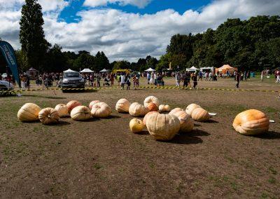 The Great Pumpkin Carnival 2019 18
