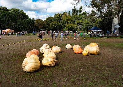 The Great Pumpkin Carnival 2019 19