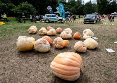 The Great Pumpkin Carnival 2019 20