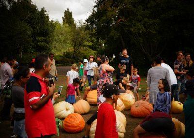 The Great Pumpkin Carnival 2019 4554
