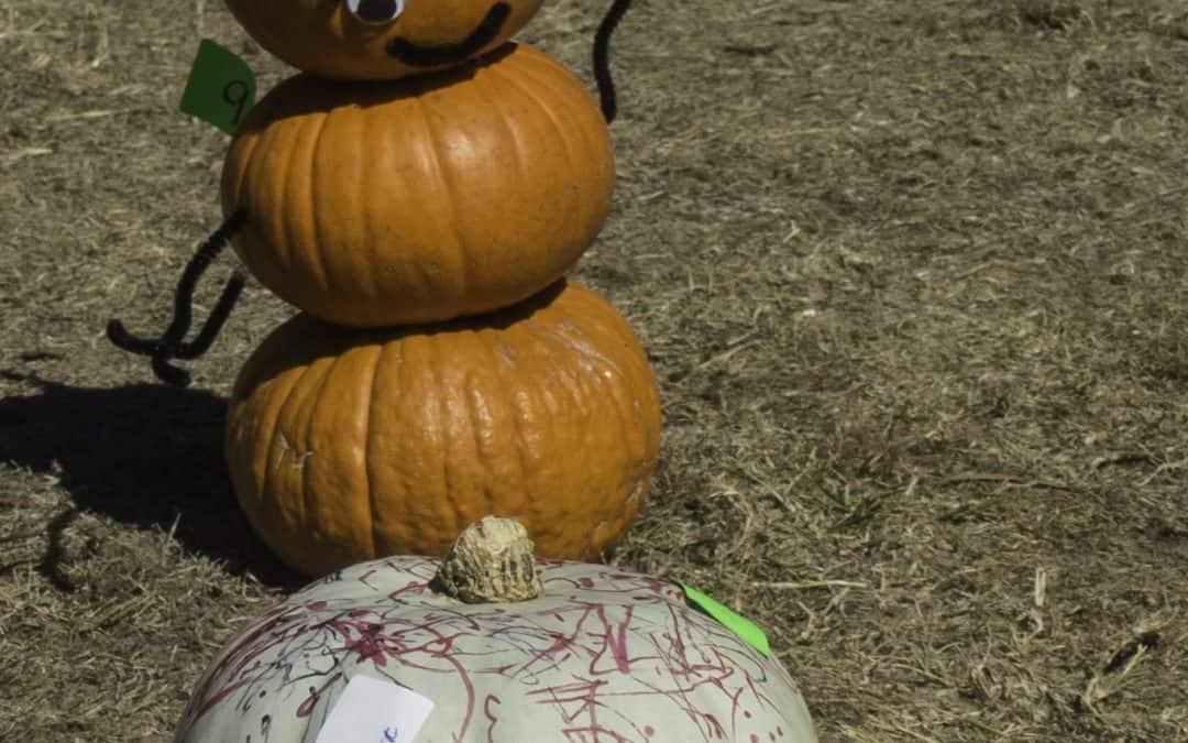 2020 Pumpkin Creation Photo Contest