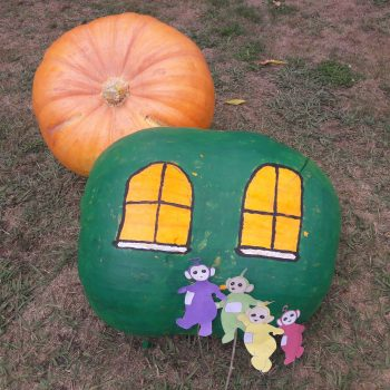 Teletubbies Pumpkin Home