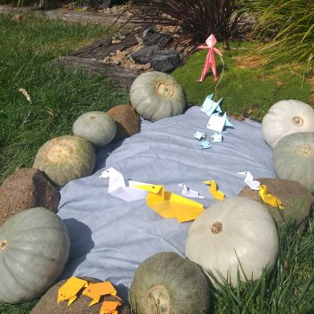 Pumpkin Pond